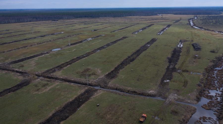 Biotopu atjaunošanas darbi Grīvu salā